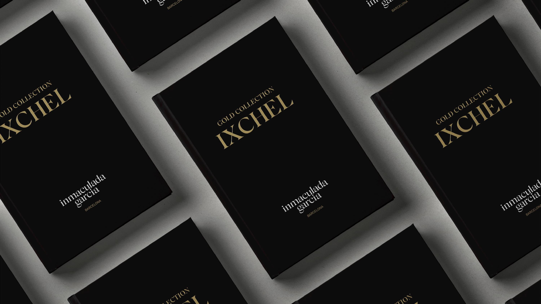libro inmaculada