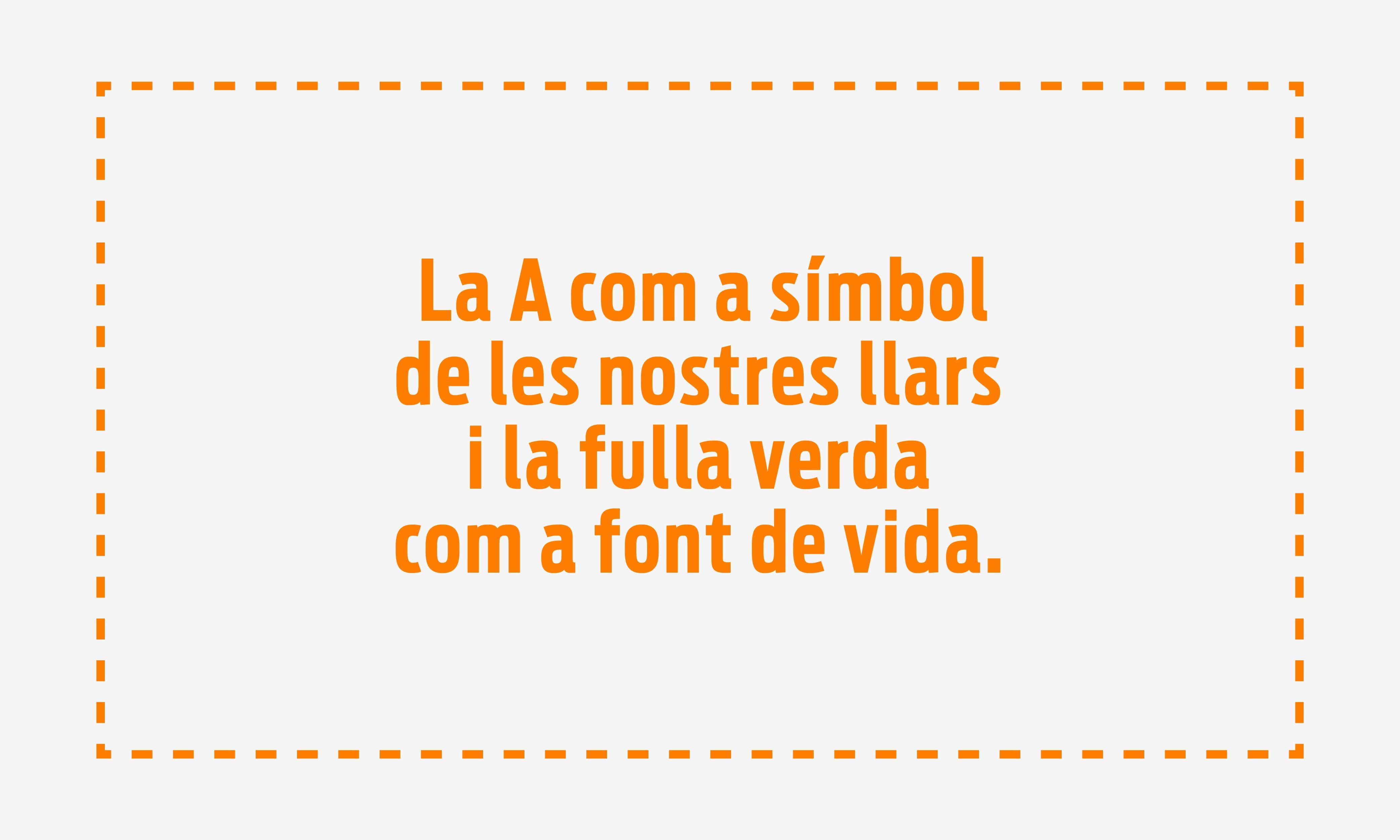 Visuales Caso Bonarea_Mesa de trabajo 1 copia 8